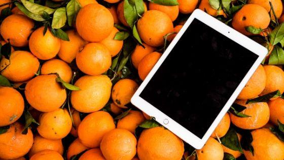 vantagens de pequenos negocios online